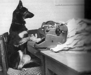 typewriterdog