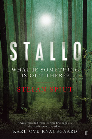 STALLO Book Cover