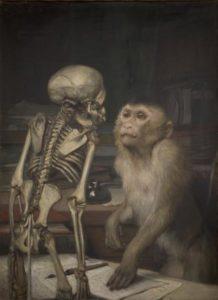 monkey-before-skeleton-1900.jpg!Large